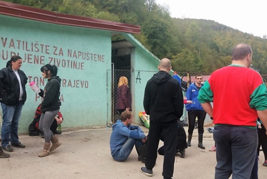 Koordinator sarajevskog azila za pse prijetio novinarki Žurnala