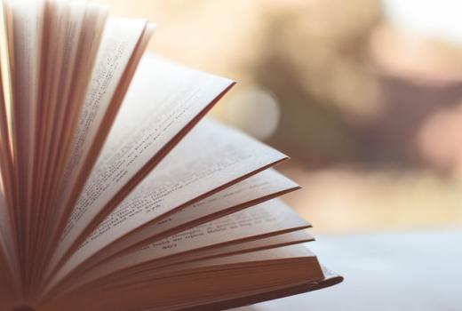 Knjige o novinarima (rdn)