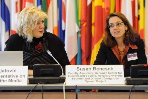 OSCE: Napori ka jačanju tolerancije i slobode govora moraju ići parelelno