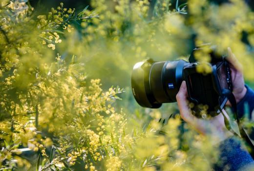 Otvoren IPA fotokonkurs 2020.